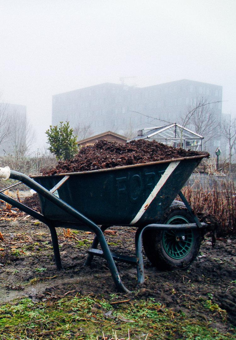 Kruiwagen met compost, groentebedden klaarmaken
